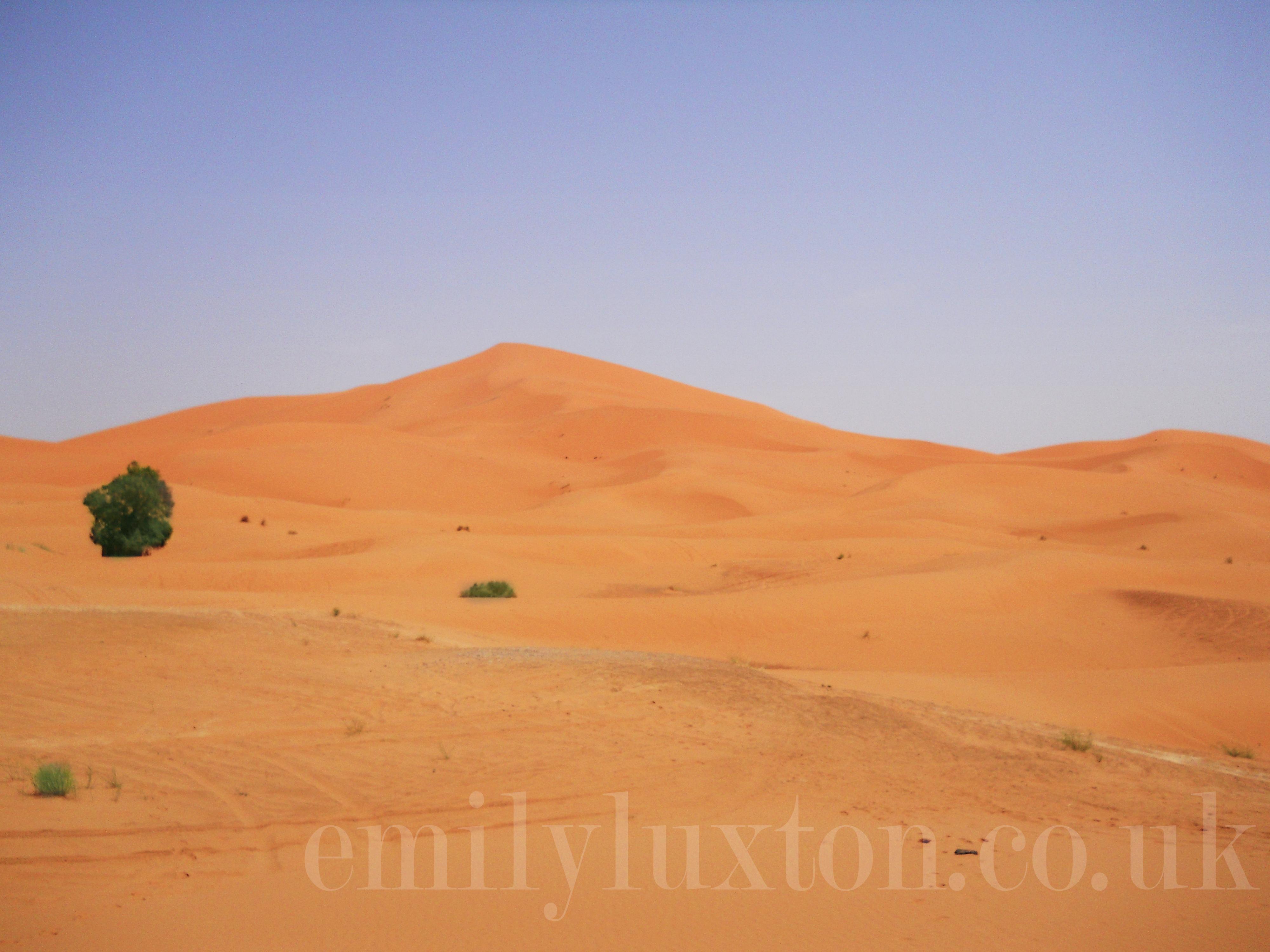 Morocco - Day Six – The Sahara