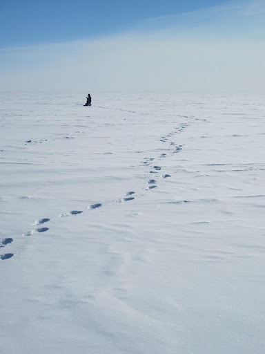 working in antartica