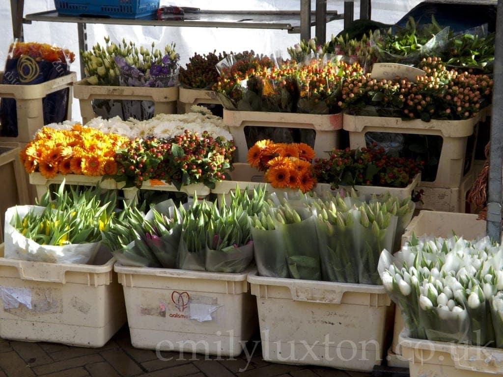 Flowers, Amsterdam