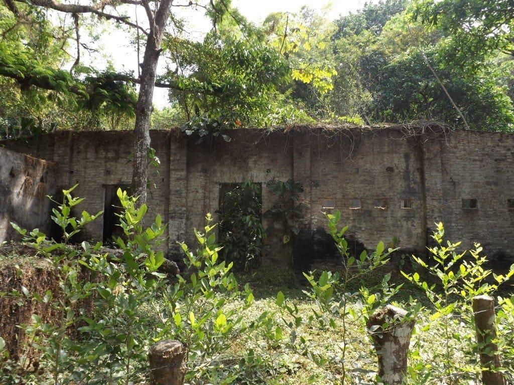Minca - Ruined building