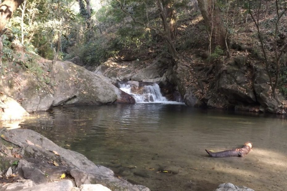 Minca, Part Three - More Waterfalls and Taking the Plunge