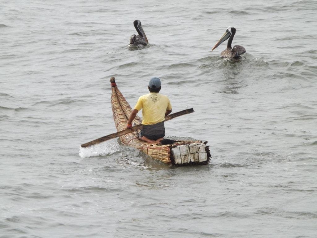 Fisherman, Pimentel