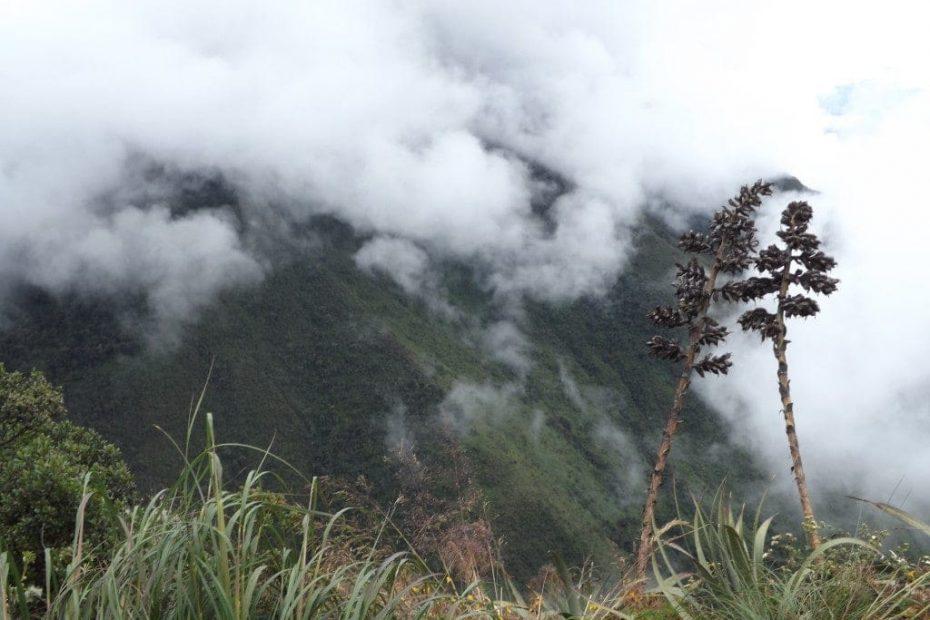 Inca Jungle Trek Peru