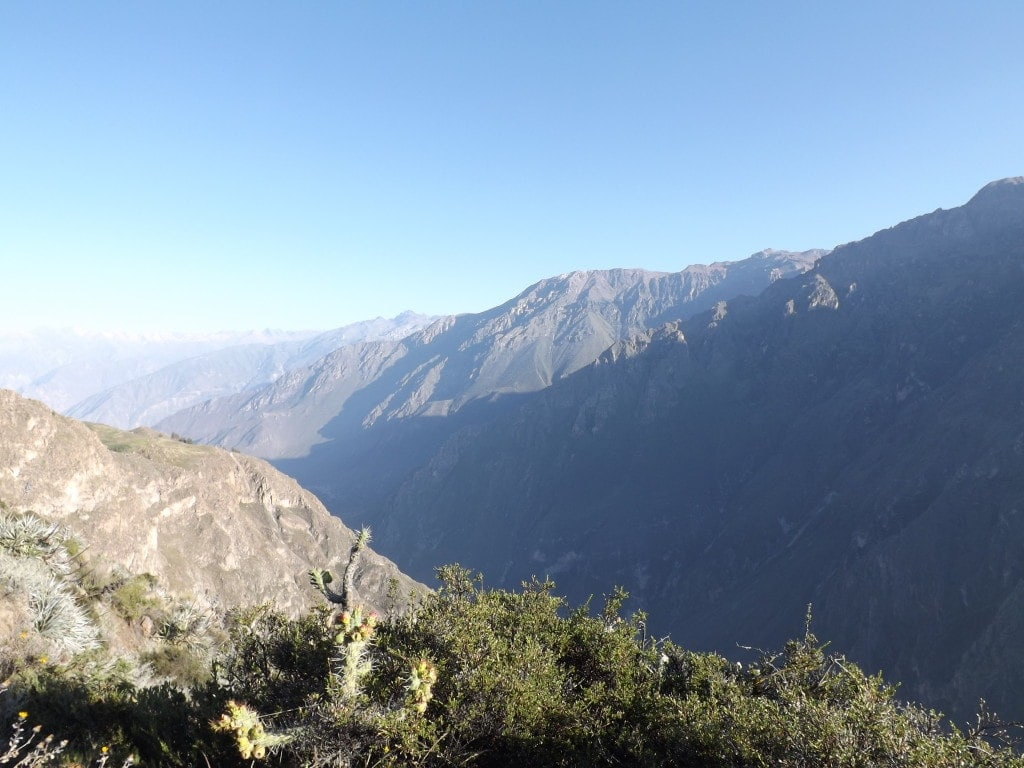 Colca Day Two