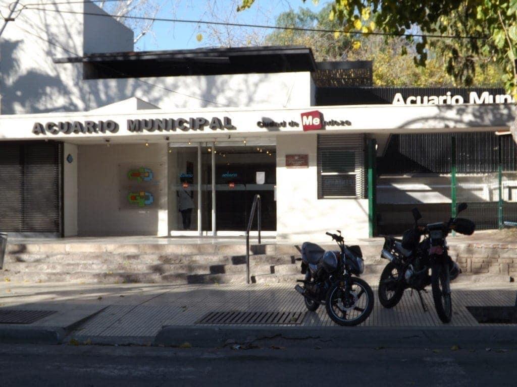 Mendoza - Aquarium