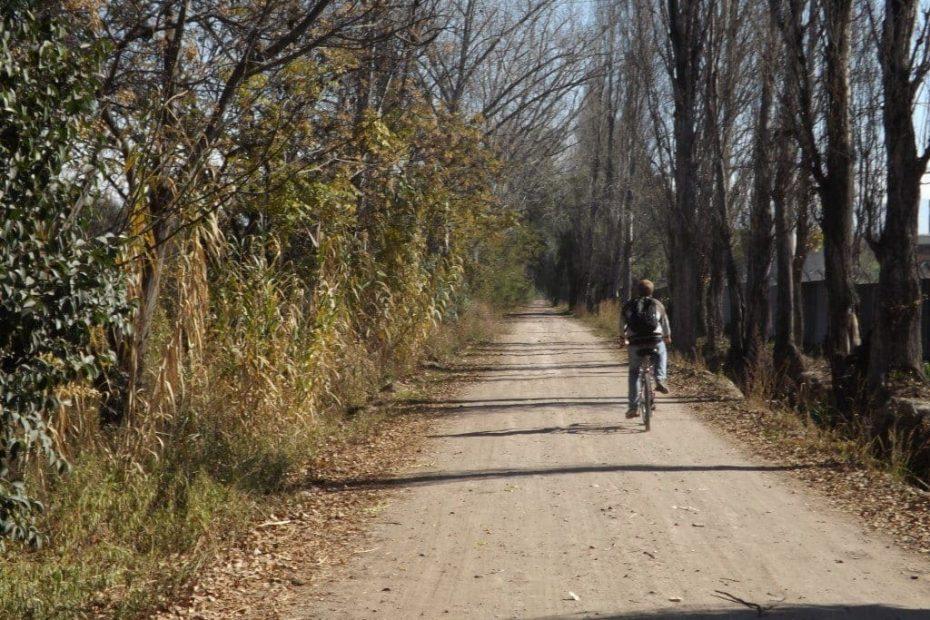 Bikes and Wine, Mendoza