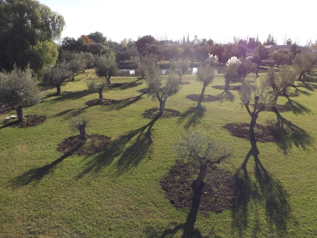 Mendoza Wine Tour - Trapiche
