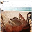 My Seven Most Annoying Social Media Travel Shares