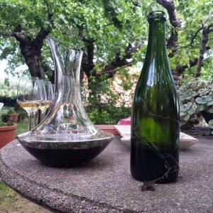 Wine tasting at Mas Molla in Costa Brava