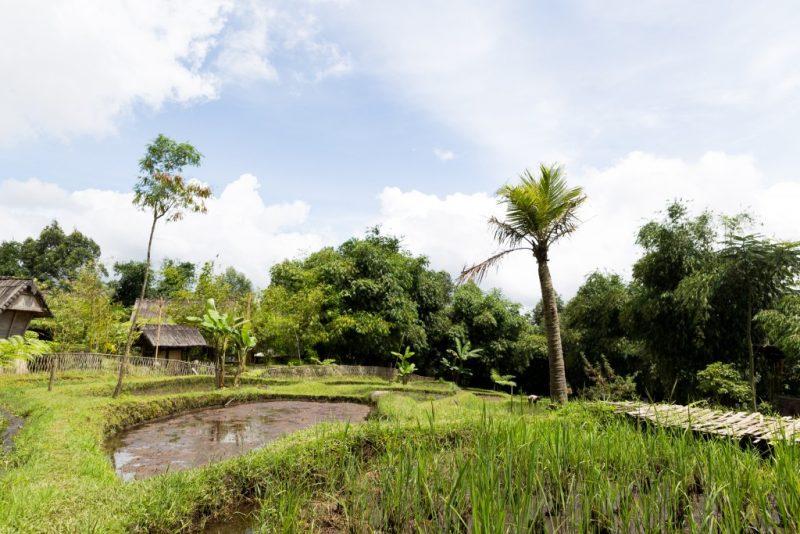 Reasons to Visit Bandung