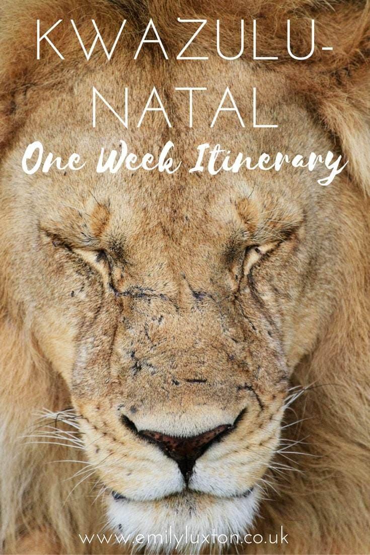 One Week Itinerary for KwaZulu-Natal, South Africa