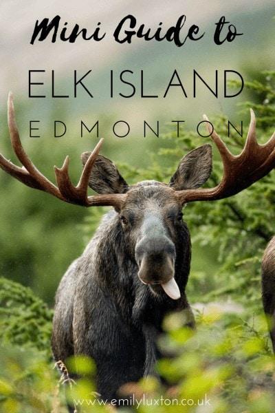 Discover Elk Island National Park
