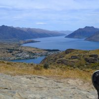 6 Things to do in New Zealand