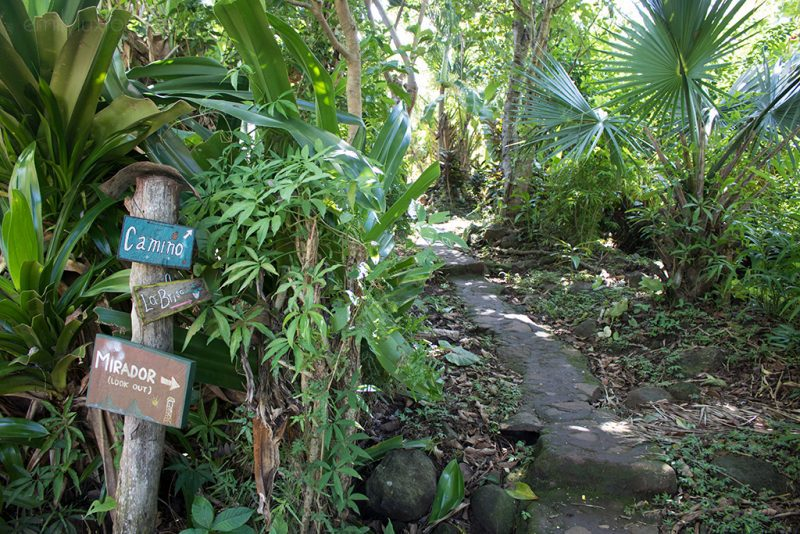 Best Things to do on Ometepe Island