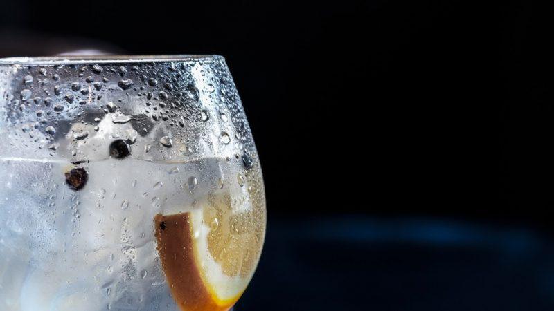 best dorset gin