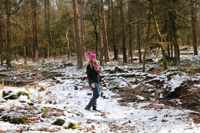 10 Things to do in the New Forest in Winter