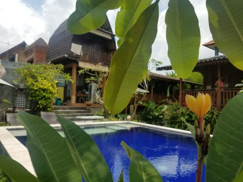 best hostels in ubud