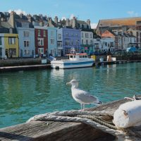 things to do in weymouth uk