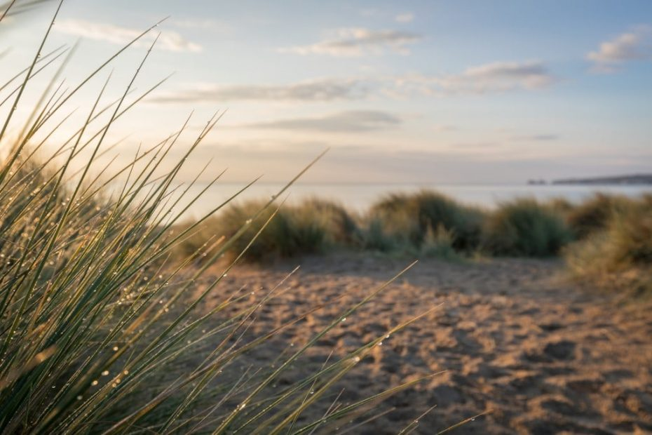 19 of the Best Dorset Beaches - A Local's Guide