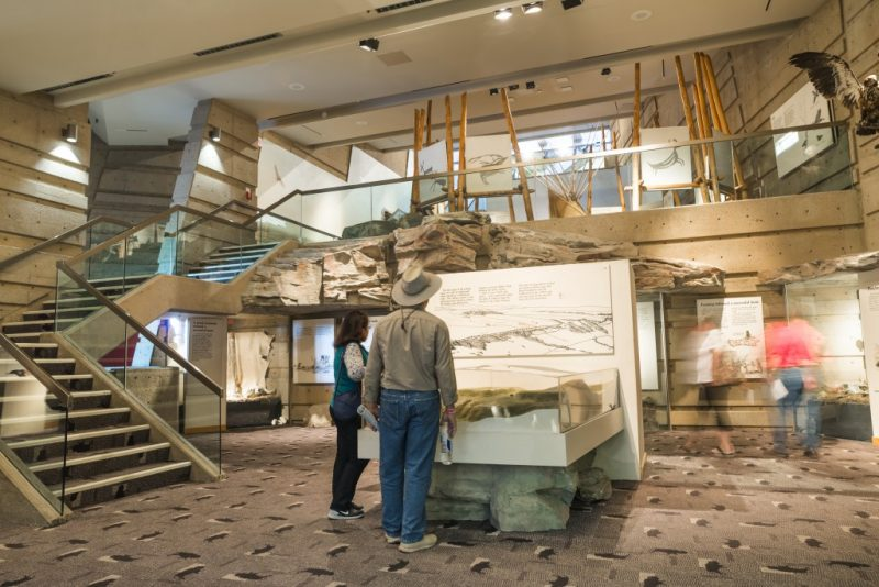 Alberta Blackfoot Culture and History