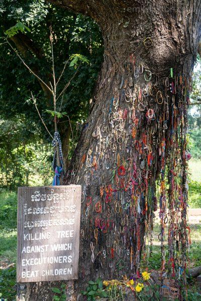killing tree cambodia