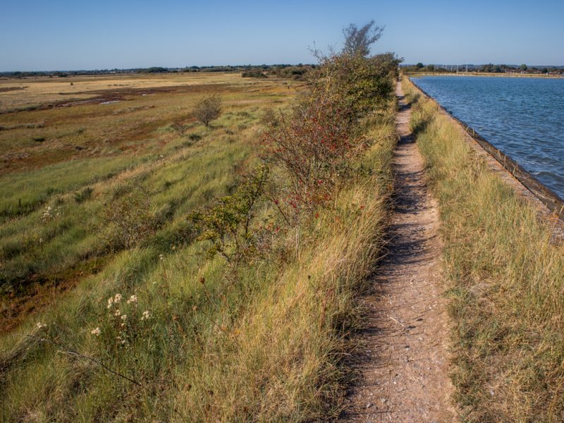 walking route on Thorney Island - perfect day trip on the English coast