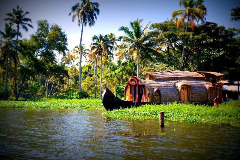 Unique experiences in Kerala