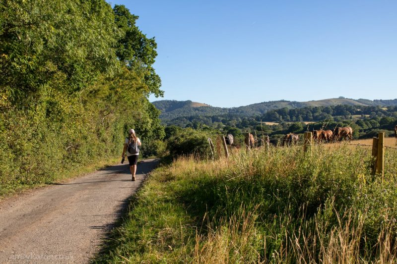 UK travel blogger Emily Luxton hiking in the South Downs England