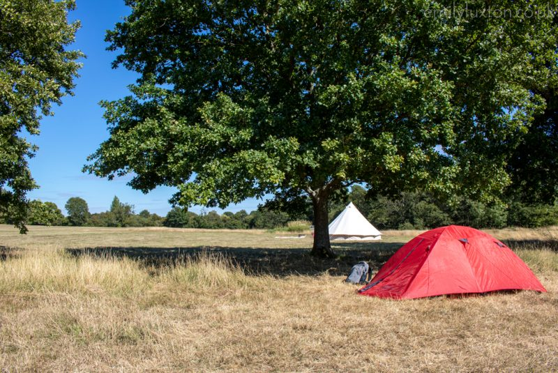 Tent at a campsite in the South Downs