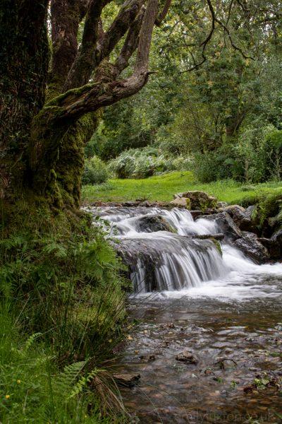 Waterfall Dartmoor