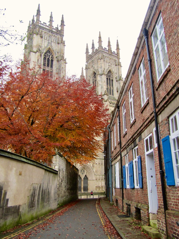 York Minster Autumn Leaves