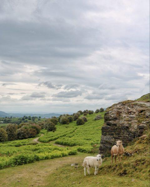 Llangattock Escarpment Brecon Beacons Wales
