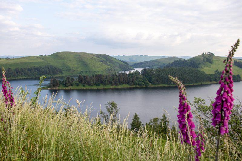 Clwedog Reservoir Viewpoint