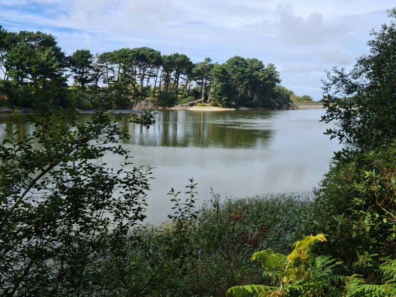 St Saviours Reservoir Guernsey
